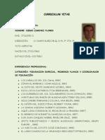 Cv Diego Jimenez Flores