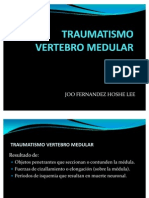 Traumatismo Vertebro Medular Hoshe