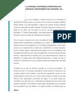 DESARROLLO INTEGRAL SOSTENIBLE E IMPORTANCIA DE IMPLEMENTARSE EN EL DEPARTAMENTO DE CASANARE, COL.