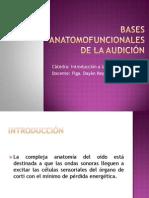 Bases Anatofunc de La Audicin Intro