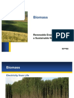 5 MW Biomass Project- Technical Report | Biomass | Combustion
