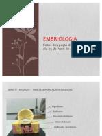 Embriologia Slides 2