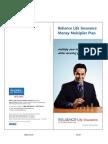 RLMMP - Brochure