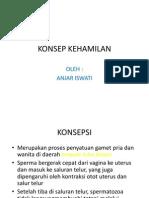 KONSEP KEHAMILAN