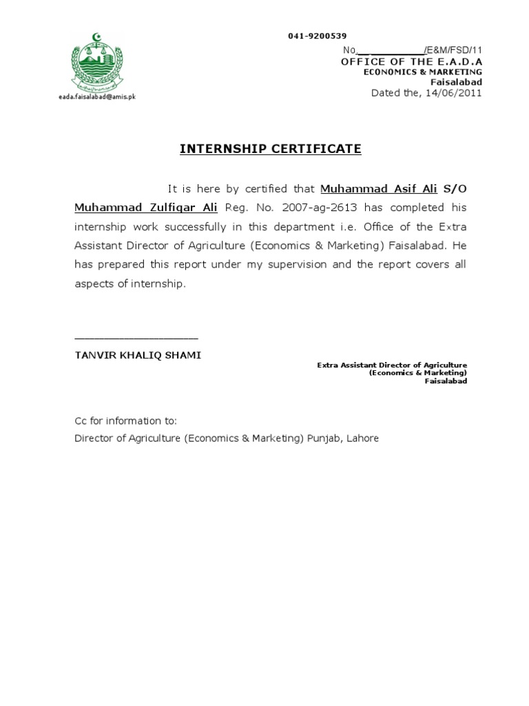Certificate Letter For Internship Sample Choice Image Summer