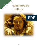 Historia- Os Caminhos Da Culturafinished