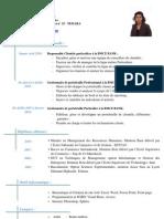 Version 2 CV (2)