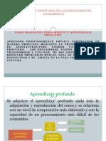 DESARROLLO Y ENSEÑANZA DE LAS HABILIDADES DEL PENSAMIENTOPTODUCTO 3