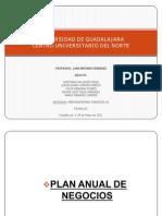 Plan Anual de Negocios