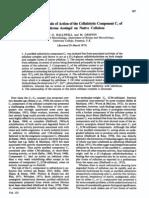 biochemj00596-0026
