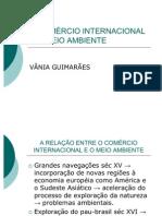 O COMÉRCIO INTERNACIONAL E O MEIO AMBIENTE.ADMppt