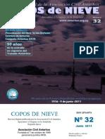Copos de Nieve Nro 32 Junio 2011