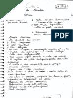 Caderno de Civil 1º - Fabi