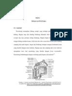 CA Nasofaring PDF