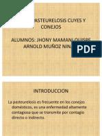 pasteurellosis