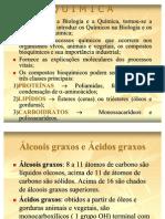 Lipidios Slides[1][1]