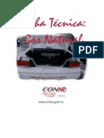 Gas Natural Ventajas y Desventajas