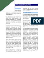 Documento Sintesis de Proteinas