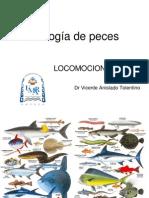 Biologia de peces, Locomocion
