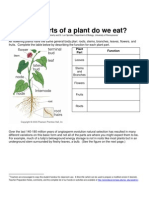 Parts of Plant Eat Protocol
