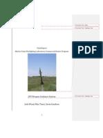 Commercial Hunter Rocket Project Final Report
