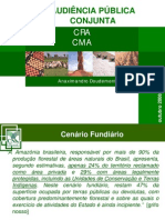 AP20081028_Desmatamento_CNA