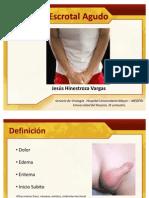Sindrome Escrotal Agudo