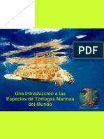 Especies Tortugas Marinas Mundo