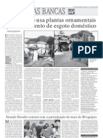 Artigo Sobre Plantas Ornament a Is