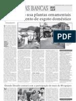 Artigo Sobre Plantas Ornament a Is