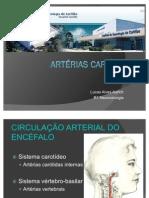 ANATOMIA DAS ARTÉRIAS CARÓTIDA COMUM, CARÓTIDA EXTERNA