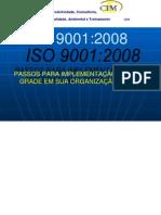 Iso9001-2008 Upgrade e Transicao