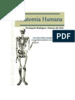 Livro de Anatomia Humana