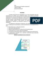SISTEMAS FUNCIONALES DE NEGOCIO