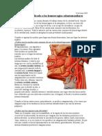 Anatomia Aplicada a Las Hemorragias Odontomaxilares