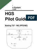 HGSPilotGuide