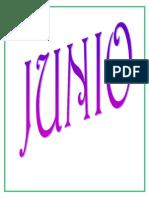 MES JUNIO