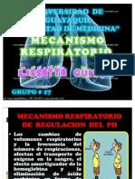 mecanismo respiratorio