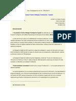 diccionario practico bilingue