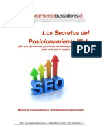 Posicionamiento Web Manual