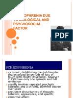 Schizophrenia 2009 (2)