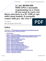 asm_linux