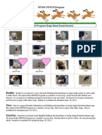 FETCH Dog Adoption Flyer-V3