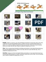 FETCH Dog Adoption Flyer-V3