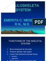 3947435 Musculoskeletal System