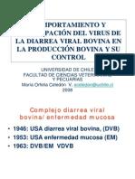 proyecta_200803