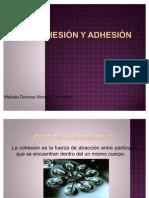 Cohesión+..
