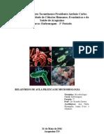 RELATÓRIOS DE MICROBIOLOGIA 1