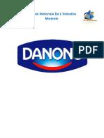 Marketing Au Sein Danone