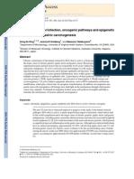Helicobacter Pylori Infection, Oncogenic Pathways and Epigenetic